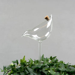 Bevattningsfågel glas